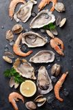 Fresh seafood on stone table. Oysters, prawns and scallops. Top view Royalty Free Stock Images