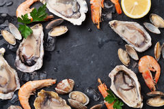 Fresh seafood on stone table Stock Images