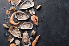 Fresh seafood on stone table. Oysters, prawns and scallops. Top view with copy space Royalty Free Stock Images