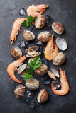 Fresh seafood on stone table. Scallops and shrimps Stock Images