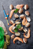 Fresh seafood on stone table. Scallops and shrimps Stock Image