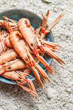 Fresh seafood straight from the sea Royalty Free Stock Images