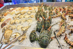 Fresh seafood, Thailand. Shop counter in Pattaya, fresh seafood, Thailand Stock Photography