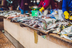 Fresh seafood on the Vietnamese market. Asian food concept Stock Photos