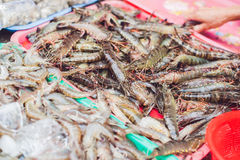 Fresh seafood on the Vietnamese market. Asian food concept Royalty Free Stock Photo