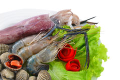 Fresh Seafood. Royalty Free Stock Image