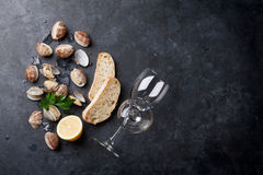 Fresh seafood and white wine. Scallops and wine glasses Royalty Free Stock Photos
