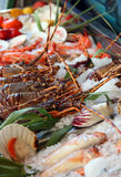 Fresh seafoods Stock Image