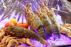 Fresh seafoods Royalty Free Stock Images
