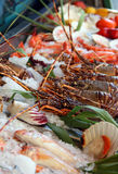 Fresh seafoods lay on an ice stock photos