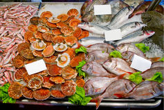 Fresh seafoods with price tag. Fresh seafoods with some blank price tag Stock Photo