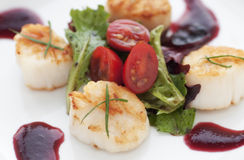 Fresh Seared Scallop Stock Image
