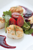 Fresh Seared Scallop Stock Photos