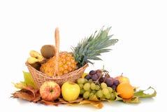 Fresh seasonal fruit Royalty Free Stock Photography