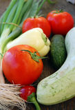 Fresh seasonal vegetables Royalty Free Stock Photography