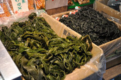 Fresh seaweed. Different kinds of fresh seaweed put in boxes being sold stock images