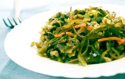 Fresh seaweed salad. With carrot royalty free stock images