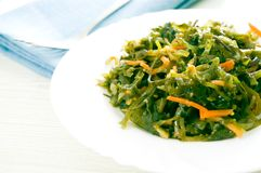 Fresh seaweed salad Royalty Free Stock Photos
