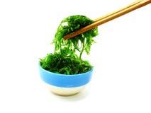 Fresh seaweed salad on white plate Royalty Free Stock Image
