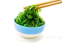 Fresh seaweed salad on white plate Stock Images