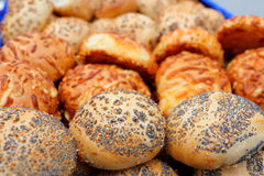 Fresh seed rolls Stock Image