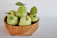 Fresh seedless guava. Stock Images