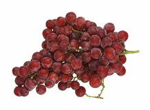 Fresh seedless red grapes. A large bunch of fresh and juicy red grapes against a white background Royalty Free Stock Images
