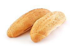 Fresh sesame buns Stock Images
