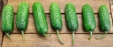 Fresh Seven Cucumbers On The Rough Wood Background. Fresh Seven Cucumbers In A Row On The Rough Rustic Wood Tabletop Royalty Free Stock Images