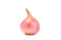 Fresh shallot Stock Images
