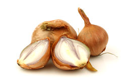 Fresh shallots and a cut one Royalty Free Stock Photos