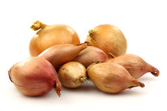 Fresh shallots and two onions Royalty Free Stock Photography