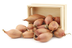 Fresh shallots in a wooden box Royalty Free Stock Images