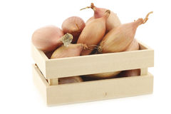 Fresh shallots in a wooden box Stock Images
