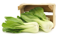 Fresh Shanghai small paksoi in a wooden crate Royalty Free Stock Image