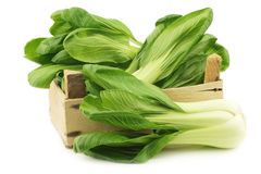 Fresh Shanghai small paksoi in a wooden crate Royalty Free Stock Photo