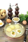 Fresh sharp mustard eggs with sauce and potatoes Royalty Free Stock Photos