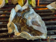 Fresh shell oysters cooking seafood. Shell oysters Barbecue Grill cooking seafood Royalty Free Stock Images