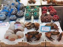 Fresh Shellfish, Athens Markets, Greece Royalty Free Stock Image