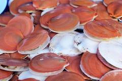 Fresh shellfish at the market Royalty Free Stock Photo