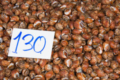 Fresh shellfish at the saefood market. Stock Image