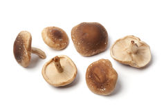 Fresh shiitake mushrooms Stock Photos