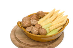 Fresh shiitake mushrooms and baby corn Stock Photos