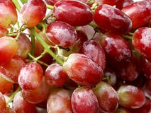 Fresh Shiny Juicy Red Grapes royalty free stock images
