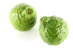 Fresh and shiny Kaffir Lime Stock Photography