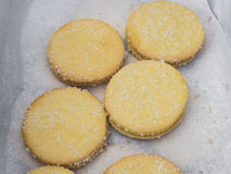 Fresh shortbread cookies Stock Photos