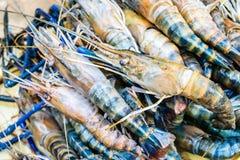 Fresh shrimp, Big prawn. Fresh shrimp or big prawn Stock Photo