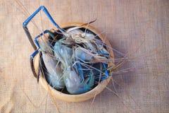 Fresh shrimp or big prawn Stock Photo