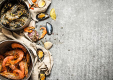 Fresh shrimp, fish and shellfish. Stock Photography