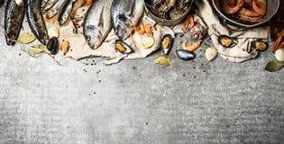Fresh shrimp, fish and shellfish. Royalty Free Stock Photography